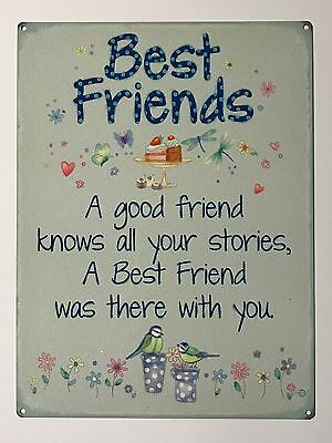 Best Friends All Your Stories Tin Metal Wall