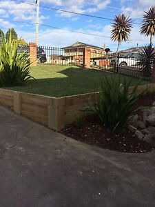 Impressive gardening and landscaping Chatswood Willoughby Area Preview