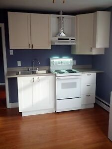 ROOMY 3 BEDROOM CLOSE TO BARRINGTON ST SUPERSTORE