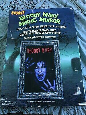 Bloody Mary Animated Mirror Spirit Halloween Very Rare Working