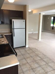 Beautiful clean 2 floor condo near hospital and college
