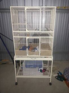 3 Level Rat Cage New Beith Logan Area Preview