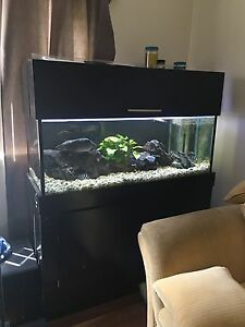 4 foot fish tank with 3 foot sump full set up Peakhurst Hurstville Area Preview