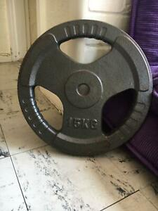 15kg weight plate