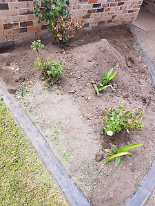Soil from garden bed Hinchinbrook Liverpool Area Preview
