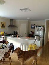 House for rent - Singleton Singleton Rockingham Area Preview