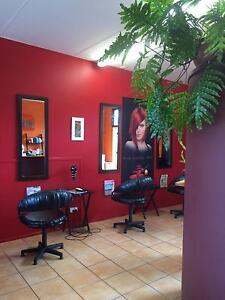 Hairdressingsalon Forest Glen Maroochydore Area Preview