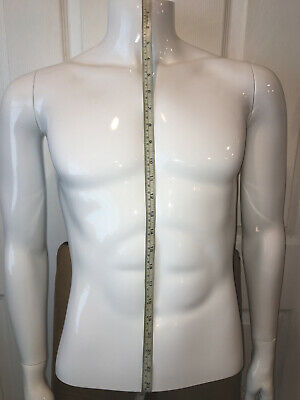 Male Torso High Quality White Plastic Mannequin - With Base Retails 225
