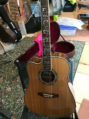 """Left handed Indie """"Tree of Life"""" electro-acoustic guitar with case"""