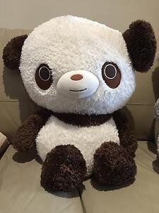Bear Soft Toy Adelaide CBD Adelaide City Preview