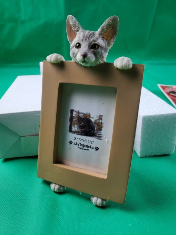SILVER TABBY CAT ~ PICTURE FRAME    item35316-9