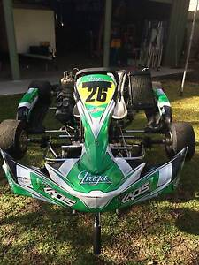 Go Kart (Intrepid Frame RL Leopard Motor) Mount Gravatt Brisbane South East Preview