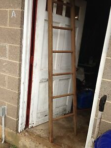 Image Result For Tall Step Ladder Ebay