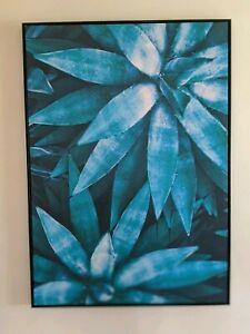Large Framed Agave Plant Art 1m x 1.4m