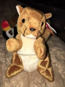 bd1234af2f9 TY NUTS the SQUIRREL BEANIE BABY - MINT with MINT TAG