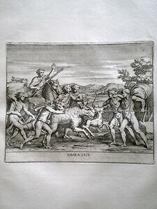 Libro-con-incisioni-Bellori-Le-Pitture-antiche-delle-grotte-di-Roma-1706