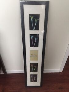 """5 picture frame 4""""x6"""""""