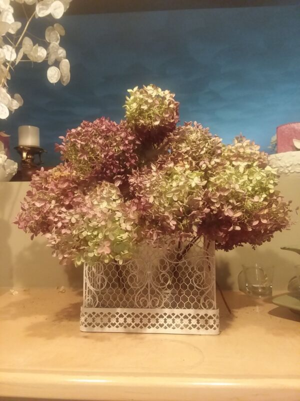 Dried Hydrangea, mauve, pink, natural flowers, Weddings, Victorian Christmas...