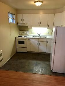 ALL-INCLUSIVE Basement Apartment close to Red River Road
