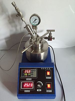 High Pressure Temperature Autoclave Reactor 25ml W Magnetic Stirring 250c