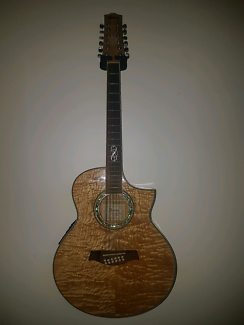 Ibanez 12 string acoustic/electric