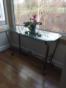 Elegant glass and metal console table