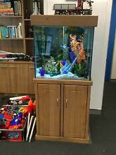 Custom Made Fish Tank Aquarium Canning Vale Canning Area Preview