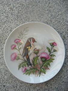 assiette murale porcelaine kaiser d cor oiseau 19 5 cm ebay. Black Bedroom Furniture Sets. Home Design Ideas