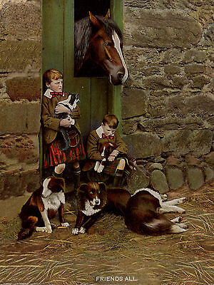 Scottish Border Collie - BORDER COLLIE SCOTTISH BOYS HORSE AND DOGS RURAL SETTING DOG GREETINGS NOTE CARD
