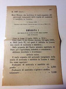 Regio Decreto 10/02/1889 Ruolo insegnanti scuola zootecnica Lucera - 632 - Italia - Accetto la restituzione entro 10 giorni a consegna avvenuta - Italia