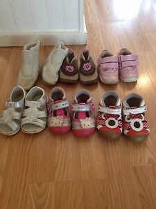 Toddler shoes sizes 5 to 6