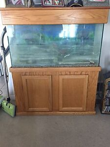 60gal fish tank and stand