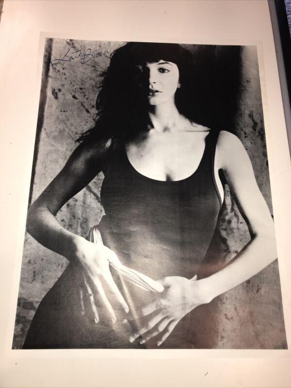 """Kate Bush Vintage Press Photo 1980 25 """" x 19 """"  Rare"""