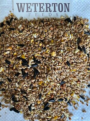 "20Kg ""All Seasons"" Wild Bird Seed Mixture feed food - FREE NEXT DAY DELIVERY"