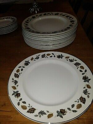 Alfred Meakin China ( Alfred Meakin Springwood China Dinner Plate circa 1975/1976)