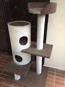 Cat tower Bundall Gold Coast City Preview