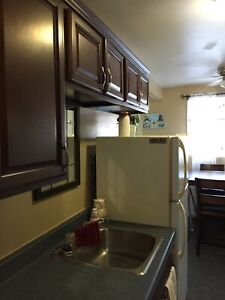 EAST TWO BEDROOM RENOVATED UNIT - 34 NASON RD #3