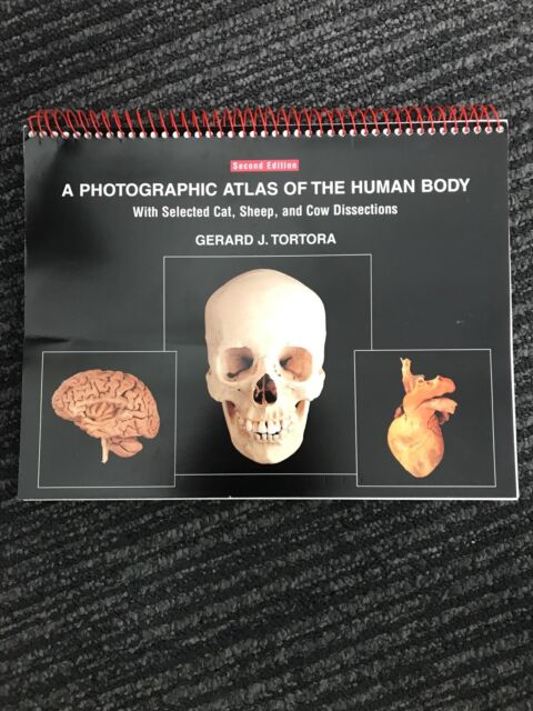 A photographic atlas of the human body. G. Tortora. Second edition ...
