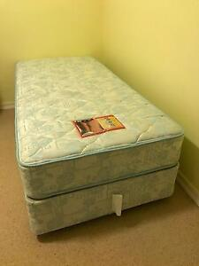 SEALY SINGLE BED MATTRESS + ENSEMBLE BASE Mansfield Brisbane South East Preview