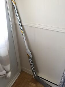 Goalie Bauer Supreme 1S Sticks
