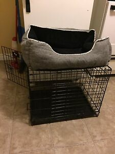 Dog kennel & bed