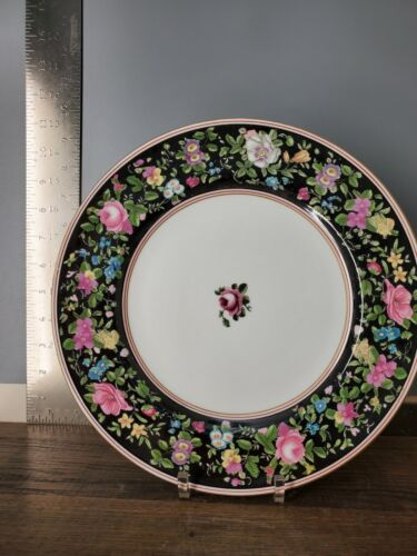 Set of 12 ANTIQUE DINNER PLATE CROWN STAFFORDSHIRE Y783 FLORAL ~10