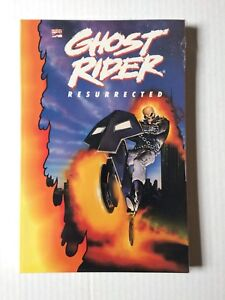 Ghost rider graphic novel comic