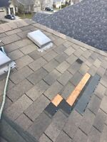 Roof Repairs- Local and Professional