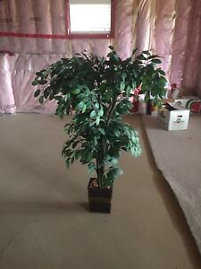 Indoor Artificial House plant