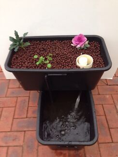 Aquaponic system, balcony garden, grow bed, vertical garden Altona Meadows Hobsons Bay Area Preview