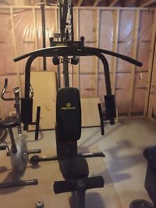 Apex all in one exercise machine