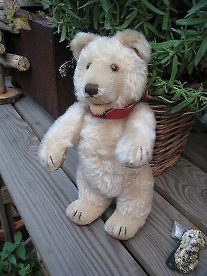 Original Steiff Teddy Baby 50er Jahre, 22cm, Knopf