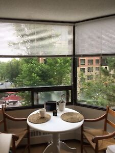 Apartment - Spacious 1 Bedroom Downtown Halifax