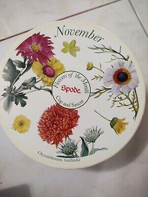 Floral November Cup /& Saucer